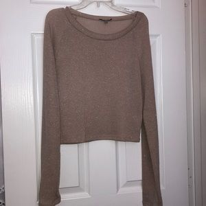 Sparkly gold and tan sweater